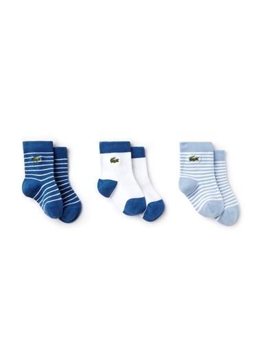 Lacoste Çorap Pembe